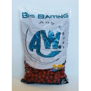 ANY WATER BOILIES ECO 6 5